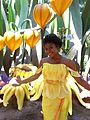 Disneyland Pixie Hollow Iridessa.jpg