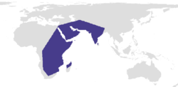 Distribution range of Belenois aurota.png