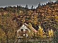 Dom przy lesie, Szmelta - panoramio.jpg
