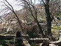 Domaine de la Reine Marie de Roumanie, Bulgarie, Balchik, 4.04.2010 - panoramio - anagh (14).jpg