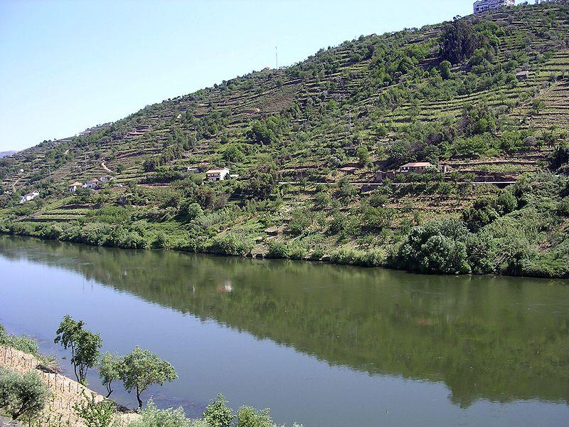 Image:Douro-river-oliv.jpg
