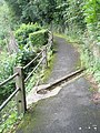 Drain on the high path above Lynmouth - geograph.org.uk - 939731.jpg