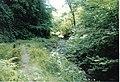 Dunskey Glen - geograph.org.uk - 265529.jpg