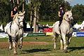 Duo de cavalières mondial du cheval percheron 2011Cl J Weber08 (24057391506).jpg