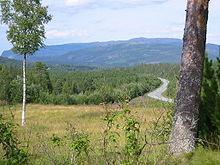 格龙 (挪威)