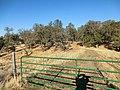 EDH 3390 - panoramio.jpg