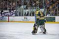 Edmonton Oilers Rookies vs UofA Golden Bears (15088634309).jpg
