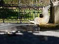 El Capricho - Jardín Artístico de la Alameda de Osuna - 14.jpg