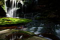 Elakala Waterfalls pub1 - West Virginia - ForestWander.jpg