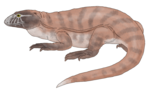 Eldeceeon life restoration.png