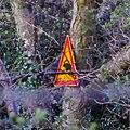 Elk Warning Sign (26219461351).jpg