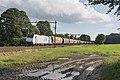 Ellecom LTE 186 427 met een graantrein richting Bad Bentheim (27307559773).jpg