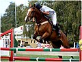 Equitación Valdivia (4708565816).jpg