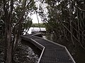 Ermington Bay Nature Pathway - panoramio (2).jpg