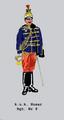 Eskadronstrompeter im k.u.k. 9. Husarenregiment.png