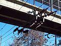 Estación Turdera - Puente y tendido eléctrico, otro lado.JPG