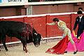 Estocada Toreador Bullfight Plaza de Toros and Folkloric Show Cancun Mexico trip 2007 2 126 (1078407830).jpg