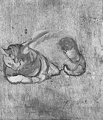 Etude du chat Raminou