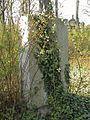 Evangelický hřbitov ve Strašnicích 45.jpg
