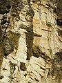 Ex cava Spinazzola, formazione rocciosa (Rovolon) 07.jpg