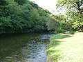 Exmoor , The River Barle - geograph.org.uk - 1507698.jpg