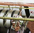 Extracting Silk - Flickr - brewbooks.jpg
