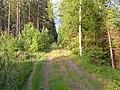 Före detta Falkenbergs Järnväg, riktning mot Limmared - panoramio.jpg