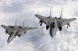 F-14A VF-211 SectionTop.JPG