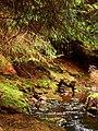 Faerie Glen - geograph.org.uk - 23962.jpg