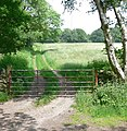 Farm track and gate - geograph.org.uk - 461593.jpg