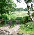 Farm track and gate - geograph.org.uk - 461593.jpg