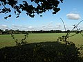 Farmland at Hare Park - geograph.org.uk - 1008720.jpg