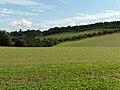 Farmland near Woolley - geograph.org.uk - 228465.jpg