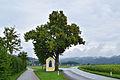 Feldkirchen - Naturdenkmal nd319 - Winterlinde (Tilia cordata) mit Herz Jesu Kapelle.jpg