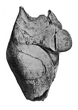 Female torso sculpted in ivory, Upper Palaeolithic period. Wellcome M0015044.jpg