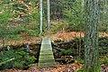 Fern Rock Nature Trail (5) (16107309386).jpg
