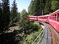 Ferrovia retica (2009) 2.JPG