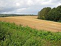 Field and woodland boundary - geograph.org.uk - 948176.jpg