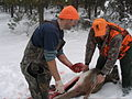 Field dressing a deer 2.jpg