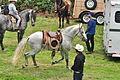 Fiestas Patrias Parade, South Park, Seattle, 2015 - preparing the horses 16 (20932015613).jpg