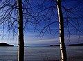 Finland 2014-03-16 (13398053003).jpg