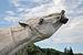 Flehmendes Pferd 32 c.jpg