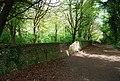 Flint wall, Friston Forest - geograph.org.uk - 1281315.jpg