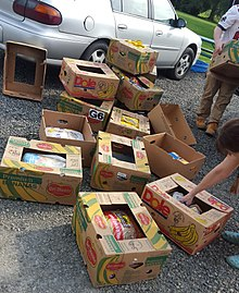 Food waste - Wikipedia