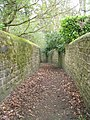 Footpath - Bondgate - geograph.org.uk - 1251447.jpg