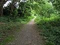 Footpath to Pool End - geograph.org.uk - 853835.jpg