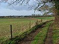 Footpath to Radley Farm - geograph.org.uk - 1231123.jpg