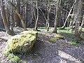 Forêt du Nideck - panoramio.jpg