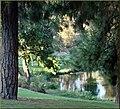 Ford Park, Lower Pond Sunrise, Redlands, CA 8-12 (7831991386).jpg