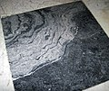 Fossil mound in limestone (Champlain Black Marble) (Crown Point Limestone, Middle Ordovician; Vermont, USA) 2.jpg